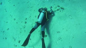Scuba diver underwater. Red Sea, Egypt. stock footage
