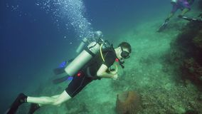 Scuba Diver underwater. Scuba diver explores underwater coral reef and watching fish.Scuba diver underwater in tropical sea.Tropical fish on coral reef. Diving royalty free stock images