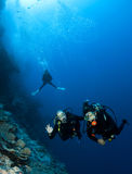 Scuba divers. Under blue water Royalty Free Stock Photo