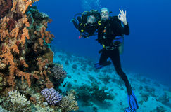 Scuba divers royalty free stock photography