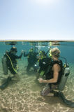 Scuba divers. Group of scuba divers do open water skills stock photos