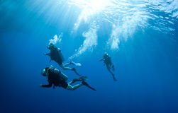 Scuba divers accend from a dive. Shilouetted scuba divers swim in the deep blue ocean royalty free stock photo