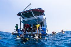 Scuba divers climbing back on dive boat on ocean Royalty Free Stock Photo