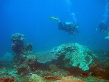 Scuba divers and coral reef. Underwater view of scuba divers exploring coral reef off Adaman beach, Thailand royalty free stock images