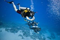 Scuba divers. On the coral reef - egypt royalty free stock images