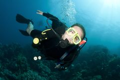 Scuba divers exsplore coral reef in the red sea Royalty Free Stock Photos