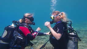 Scuba divers stock video