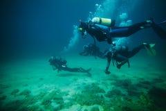 Scuba divers. Four scuba divers, underwater image stock photo