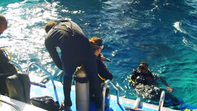 Scuba Divers Getting Ready to Jump off the Boat into the Red sea, Egypt stock video