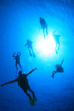 Scuba Divers having fun Stock Photo