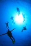Scuba Divers having fun stock photo