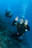 Scuba divers having fun on a dive. Male scuba diver makes face at camera, having fun on a dive Stock Photo