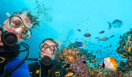 Scuba divers looking at camera underwater. Couple of scuba divers looking at camera underwater. Beautiful coral reef with many fish on background Royalty Free Stock Photography