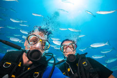 Scuba divers looking at camera underwater. Couple of scuba divers looking at camera underwater. Flock of fish on background Royalty Free Stock Photo