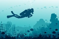 Scuba divers, mantas, coral reef, fishes. Underwater sea nad water sport. stock image