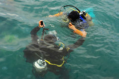 Scuba divers scuba dive in sea Royalty Free Stock Photography