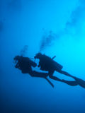 Scuba Divers Silhouette. Silhouette of scuba divers and bubbles diving on reef Royalty Free Stock Images