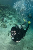 Scuba divers swim over coral reef Royalty Free Stock Photo