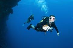 Scuba divers swim together stock photos