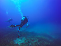Scuba Divers swimming over the live coral reef full of fish Royalty Free Stock Photography