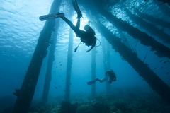 Scuba Divers under pier, Bonaire. Scuba diver silhouettes under pier pilings, Bonaire stock photography