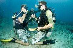 Scuba divers under the water Stock Photos