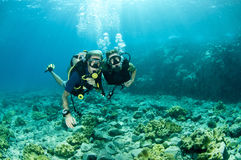 Scuba divers under the water Royalty Free Stock Images