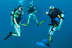 Scuba divers under the water Stock Photo