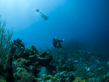 Scuba divers underwater Royalty Free Stock Images
