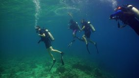 Scuba Divers underwater. Scuba divers explores underwater coral reef and watching fish.Scuba diver underwater in tropical sea.Tropical fish on coral reef stock image