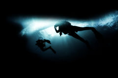 Scuba divers. Underwater World and scuba divers Royalty Free Stock Image