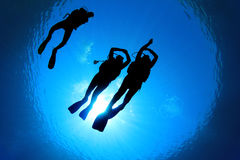 Scuba Diving stock photography