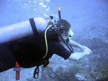 Scuba Diving. A scuba diver swimming on the reef Stock Photo