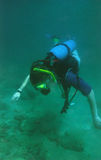 Scuba Diving. Off the coast of the Middle East Royalty Free Stock Photography
