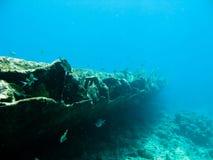Scuba diving  Stock Photo