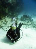 Scuba diving. Shots of scuba diving in the Florida keys Stock Images