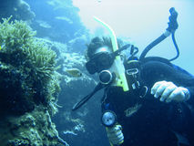 Scuba diving adventure Royalty Free Stock Images