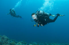 Scuba diving buddies enjoy a dive. In the ocean royalty free stock images