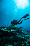 Scuba diving diver kapoposang sulawesi indonesia underwater Royalty Free Stock Image