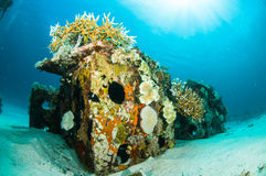 Scuba diving diver shipwreck kapoposang sulawesi indonesia underwater Stock Images