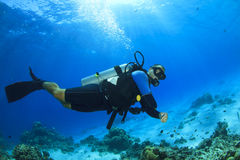 Scuba Diving. Scuba Diver swims in ocean Royalty Free Stock Image