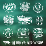 Scuba diving emblems and blurred background Royalty Free Stock Photo