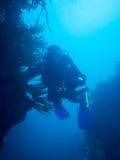 Scuba diving in Ireland Stock Photos