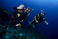 Scuba diving in thailand Royalty Free Stock Photography