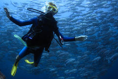 Scuba diving. Underwater shoot of a young lady diving with scuba in a clear sea with swirling school of Jack fish on the background stock photo