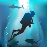 Scuba diving vector Stock Images