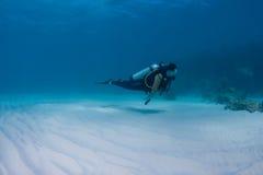 Scuba-duiker royalty-vrije stock fotografie