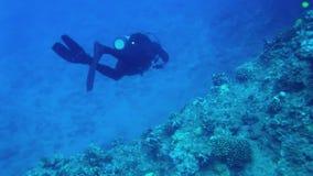 Scuba-duiker bij Tropische Ertsader HD stock footage