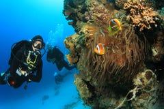 Scuba-duiker en Clownfish stock afbeeldingen