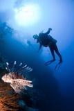 Scuba-duiker en lionfish stock afbeelding